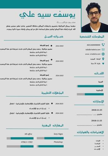 سيرة ذاتية احترافية بالعربي