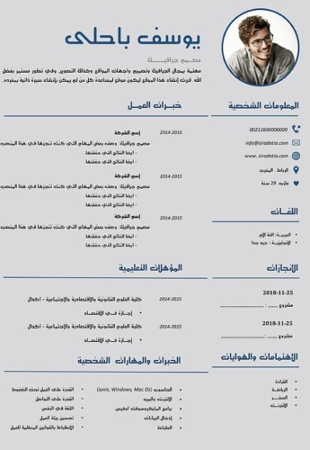سيرة ذاتية أنيقة بالعربي