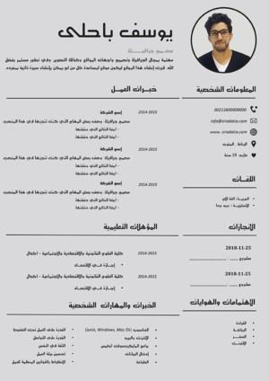 سيرة ذاتية مميزة بالعربي